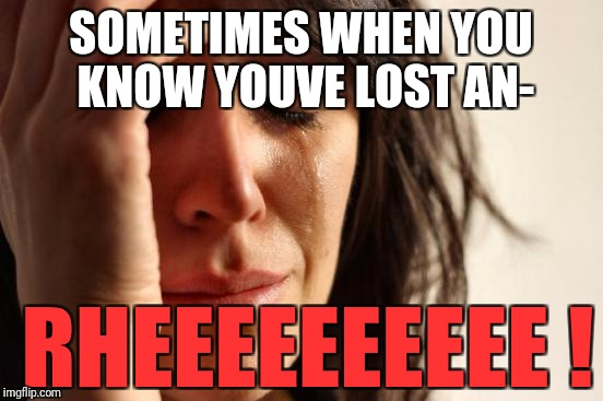 First World Problems Meme | SOMETIMES WHEN YOU KNOW YOUVE LOST AN- RHEEEEEEEEEE ! | image tagged in memes,first world problems | made w/ Imgflip meme maker