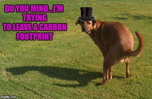 DO YOU MIND...I'M TRYING TO LEAVE A CARBON FOOTPRINT | made w/ Imgflip meme maker
