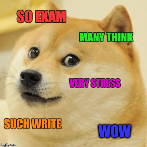 Doge Meme | SO EXAM MANY THINK VERY STRESS SUCH WRITE WOW | image tagged in memes,doge | made w/ Imgflip meme maker