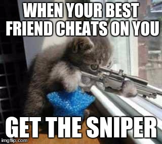 CatSniper | WHEN YOUR BEST FRIEND CHEATS ON YOU GET THE SNIPER | image tagged in catsniper | made w/ Imgflip meme maker