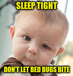 Skeptical Baby Meme | SLEEP TIGHT DON'T LET BED BUGS BITE | image tagged in memes,skeptical baby | made w/ Imgflip meme maker