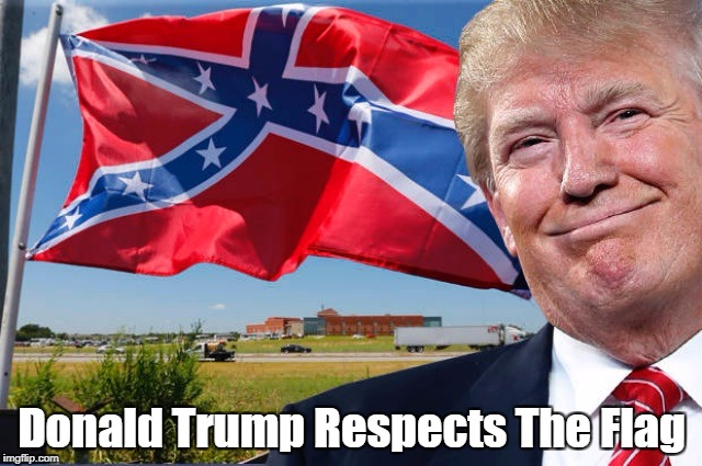 """Donald Trump Respects The Flag"" | Donald Trump Respects The Flag | image tagged in deplorable donald,despicable donald,dishonorable donald,despotic donald,devious donald,dishonest donald | made w/ Imgflip meme maker"