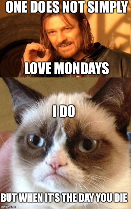 Oh, Yeah!! Monday | ONE DOES NOT SIMPLY LOVE MONDAYS I DO BUT WHEN IT'S THE DAY YOU DIE | image tagged in memes,one does not simply,angry cat | made w/ Imgflip meme maker