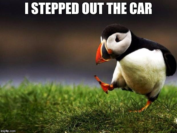 Unpopular Opinion Puffin Meme | I STEPPED OUT THE CAR | image tagged in memes,unpopular opinion puffin | made w/ Imgflip meme maker