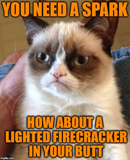 Grumpy Cat Meme | YOU NEED A SPARK HOW ABOUT A LIGHTED FIRECRACKER IN YOUR BUTT | image tagged in memes,grumpy cat | made w/ Imgflip meme maker