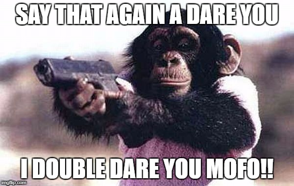 don't mess with me | SAY THAT AGAIN A DARE YOU I DOUBLE DARE YOU MOFO!! | image tagged in don't mess with me,say that again i dare you,animals,animal attack | made w/ Imgflip meme maker