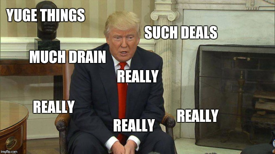 Stumped Trump | YUGE THINGS REALLY SUCH DEALS MUCH DRAIN REALLY REALLY REALLY | image tagged in stumped trump | made w/ Imgflip meme maker