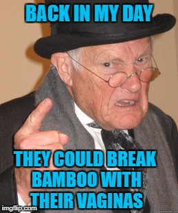 Back In My Day Meme | BACK IN MY DAY THEY COULD BREAK BAMBOO WITH THEIR VA**NAS | image tagged in memes,back in my day | made w/ Imgflip meme maker