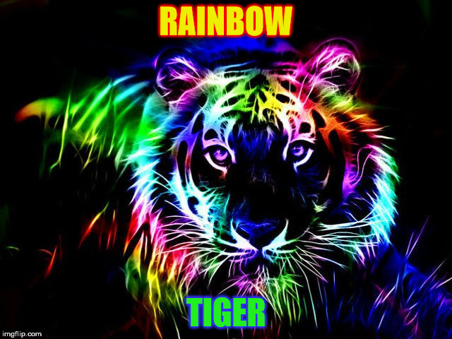 RAINBOW TIGER | made w/ Imgflip meme maker