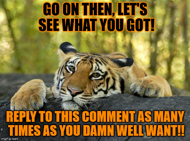 GO ON THEN, LET'S SEE WHAT YOU GOT! REPLY TO THIS COMMENT AS MANY TIMES AS YOU DAMN WELL WANT!! | made w/ Imgflip meme maker