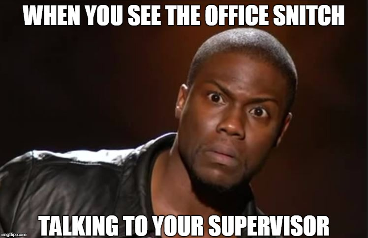 office snitch | WHEN YOU SEE THE OFFICE SNITCH TALKING TO YOUR SUPERVISOR | image tagged in funny memes,too funny,hahahaha,hilarious,very funny | made w/ Imgflip meme maker