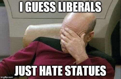 Captain Picard Facepalm Meme | I GUESS LIBERALS JUST HATE STATUES | image tagged in memes,captain picard facepalm | made w/ Imgflip meme maker