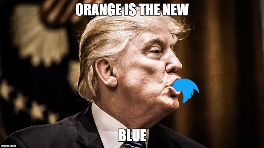 ORANGE IS THE NEW BLUE | image tagged in trump twitter | made w/ Imgflip meme maker
