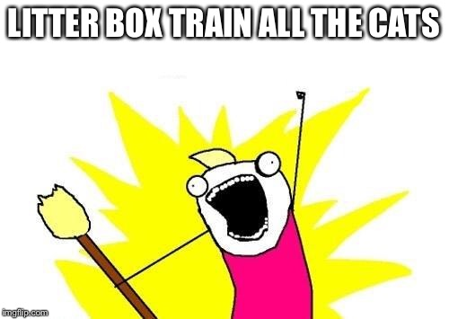 X All The Y Meme | LITTER BOX TRAIN ALL THE CATS | image tagged in memes,x all the y | made w/ Imgflip meme maker