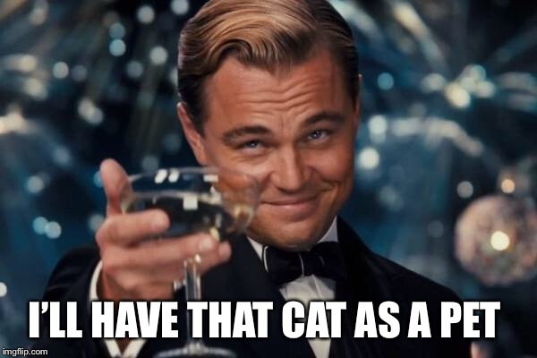 Leonardo Dicaprio Cheers Meme | I'LL HAVE THAT CAT AS A PET | image tagged in memes,leonardo dicaprio cheers | made w/ Imgflip meme maker