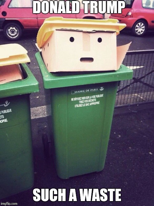 Trashing Trump | DONALD TRUMP SUCH A WASTE | image tagged in trump | made w/ Imgflip meme maker
