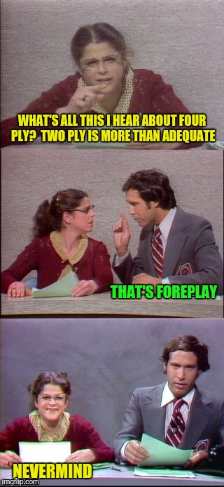 WHAT'S ALL THIS I HEAR ABOUT FOUR PLY?  TWO PLY IS MORE THAN ADEQUATE NEVERMIND THAT'S FOREPLAY | made w/ Imgflip meme maker