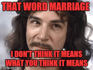 THAT WORD MARRIAGE I DON'T THINK IT MEANS WHAT YOU THINK IT MEANS | made w/ Imgflip meme maker