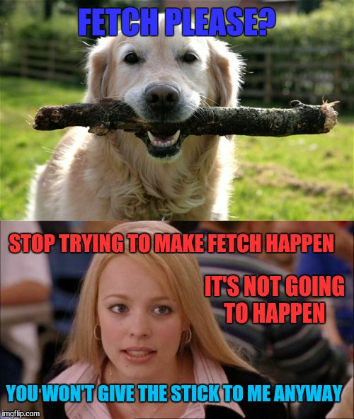 You just want to play tug-o-war  | FETCH PLEASE? STOP TRYING TO MAKE FETCH HAPPEN IT'S NOT GOING TO HAPPEN YOU WON'T GIVE THE STICK TO ME ANYWAY | image tagged in it's not gonna happen,dogs,mean girls,memes | made w/ Imgflip meme maker