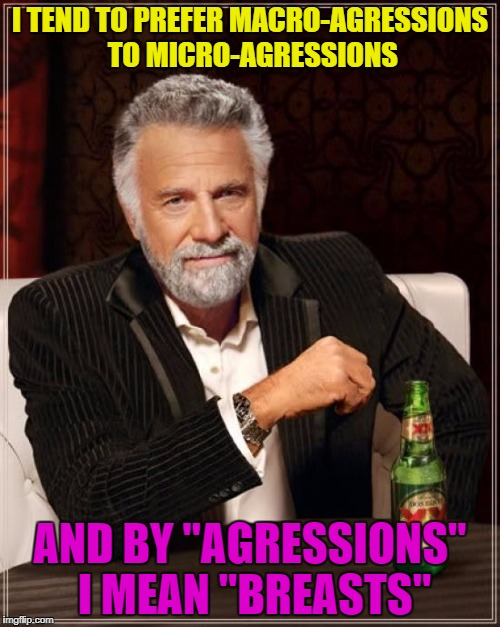 "The Most Interesting Man In The World Meme | I TEND TO PREFER MACRO-AGRESSIONS TO MICRO-AGRESSIONS AND BY ""AGRESSIONS"" I MEAN ""BREASTS"" 