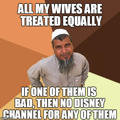 Ordinary Muslim Man Meme | ALL MY WIVES ARE TREATED EQUALLY IF ONE OF THEM IS BAD, THEN NO DISNEY CHANNEL FOR ANY OF THEM | image tagged in memes,ordinary muslim man,disney,funny memes | made w/ Imgflip meme maker