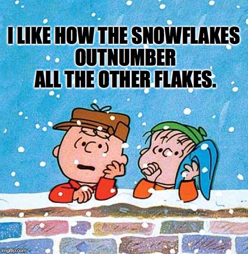 Do the math.  See the math. | I LIKE HOW THE SNOWFLAKES OUTNUMBER ALL THE OTHER FLAKES. | image tagged in memes,snowflakes,charlie brown,peanuts | made w/ Imgflip meme maker
