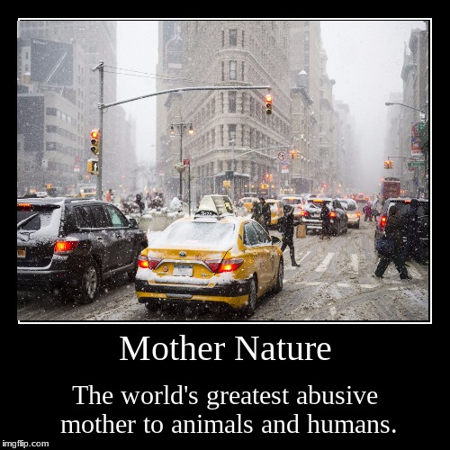 Mother Nature | The world's greatest abusive mother to animals and humans. | image tagged in funny,demotivationals | made w/ Imgflip demotivational maker