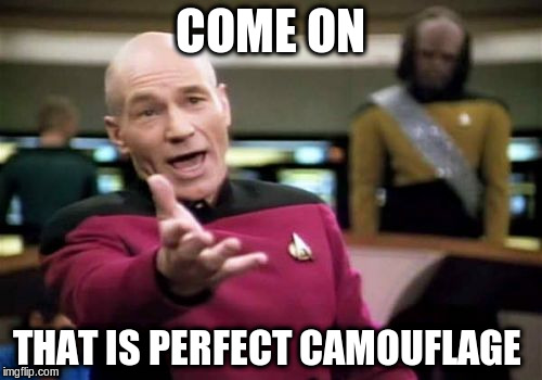 Picard Wtf Meme | COME ON THAT IS PERFECT CAMOUFLAGE | image tagged in memes,picard wtf | made w/ Imgflip meme maker
