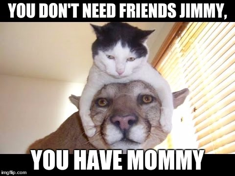 YOU DON'T NEED FRIENDS JIMMY, YOU HAVE MOMMY | image tagged in friends,mommy | made w/ Imgflip meme maker