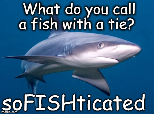 Sharks Jokes | What do you call a fish with a tie? soFISHticated | image tagged in memes,funny memes,shark,jokes | made w/ Imgflip meme maker