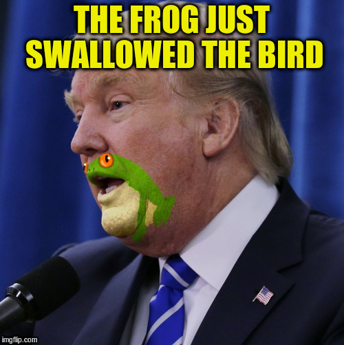 THE FROG JUST SWALLOWED THE BIRD | made w/ Imgflip meme maker