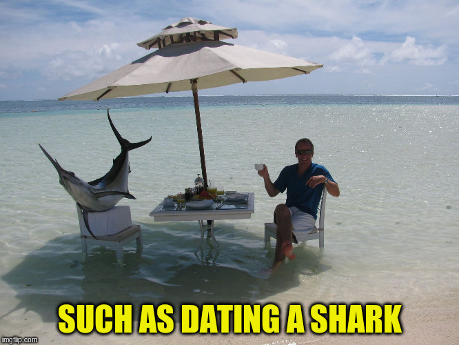 SUCH AS DATING A SHARK | made w/ Imgflip meme maker
