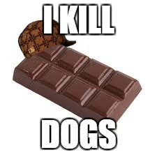 chocolate bar | I KILL DOGS | image tagged in chocolate bar,scumbag | made w/ Imgflip meme maker
