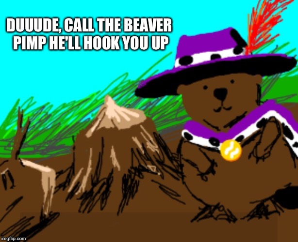 DUUUDE, CALL THE BEAVER PIMP HE'LL HOOK YOU UP | made w/ Imgflip meme maker