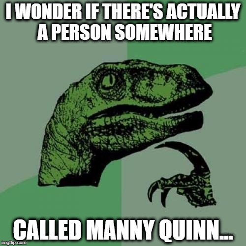 Philosoraptor Meme | I WONDER IF THERE'S ACTUALLY A PERSON SOMEWHERE CALLED MANNY QUINN... | image tagged in memes,philosoraptor | made w/ Imgflip meme maker