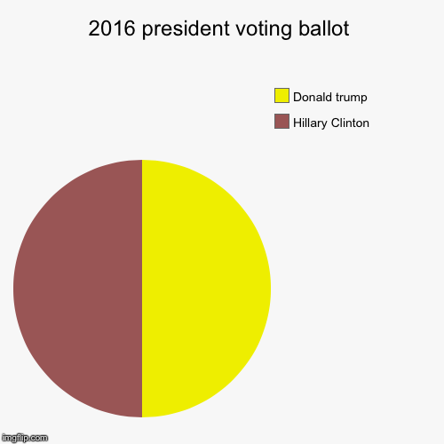 2016 president voting ballot | Hillary Clinton , Donald trump | image tagged in funny,pie charts | made w/ Imgflip pie chart maker