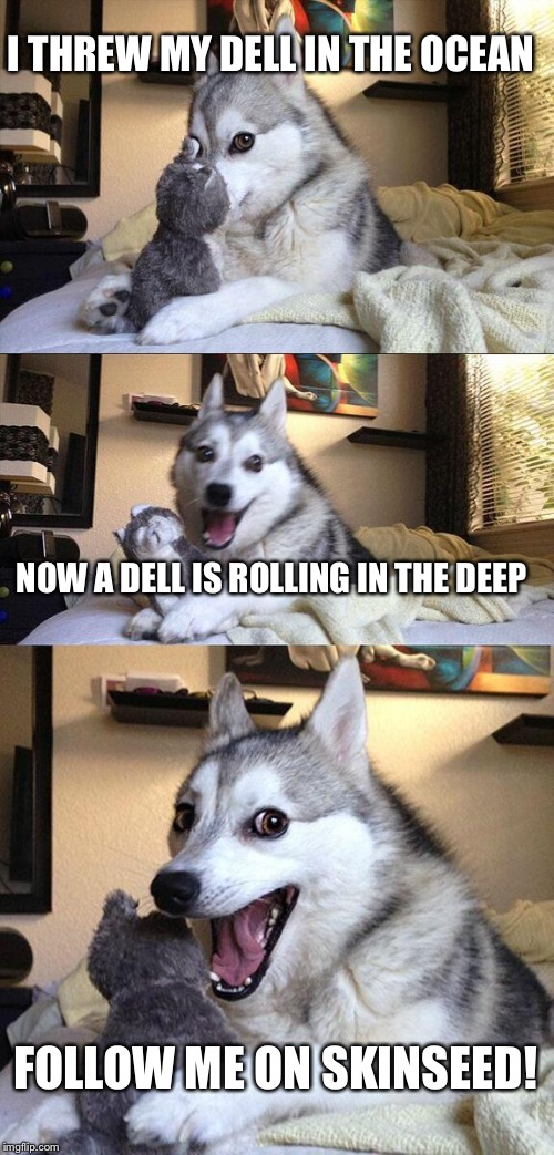 Bad Pun Dog Meme | I THREW MY DELL IN THE OCEAN NOW A DELL IS ROLLING IN THE DEEP FOLLOW ME ON SKINSEED! | image tagged in memes,bad pun dog | made w/ Imgflip meme maker