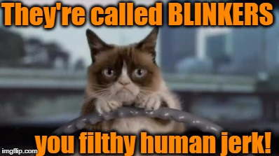 Grumpy Cat not the most patient feline at rush hour | They're called BLINKERS you filthy human jerk! | image tagged in grumpy cat,rush hour | made w/ Imgflip meme maker