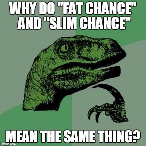 "Philosoraptor Meme | WHY DO ""FAT CHANCE"" AND ""SLIM CHANCE"" MEAN THE SAME THING? 