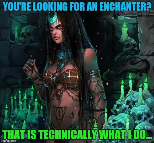 YOU'RE LOOKING FOR AN ENCHANTER? THAT IS TECHNICALLY WHAT I DO... | made w/ Imgflip meme maker