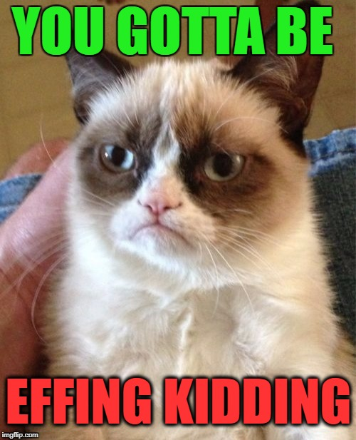 Grumpy Cat Meme | YOU GOTTA BE EFFING KIDDING | image tagged in memes,grumpy cat | made w/ Imgflip meme maker