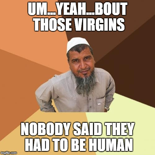 Ordinary Muslim Man Meme | UM...YEAH...BOUT THOSE VIRGINS NOBODY SAID THEY HAD TO BE HUMAN | image tagged in memes,ordinary muslim man | made w/ Imgflip meme maker