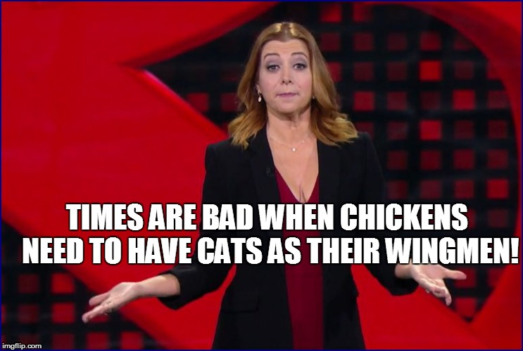TIMES ARE BAD WHEN CHICKENS NEED TO HAVE CATS AS THEIR WINGMEN! | made w/ Imgflip meme maker