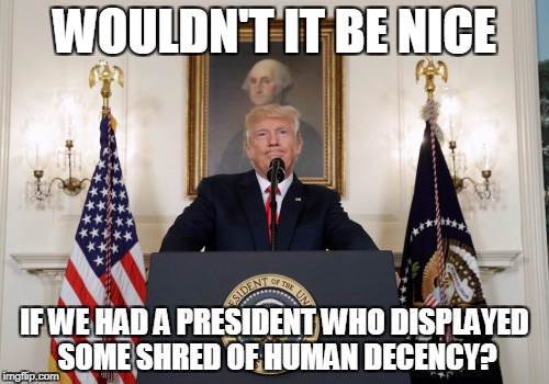 WOULDN'T IT BE NICE IF WE HAD A PRESIDENT WHO DISPLAYED SOME SHRED OF HUMAN DECENCY? | image tagged in trump | made w/ Imgflip meme maker