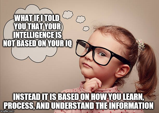 Lifespan Development | WHAT IF I TOLD YOU THAT YOUR INTELLIGENCE IS NOT BASED ON YOUR IQ INSTEAD IT IS BASED ON HOW YOU LEARN, PROCESS, AND UNDERSTAND THE INFORMAT | image tagged in intelligence | made w/ Imgflip meme maker