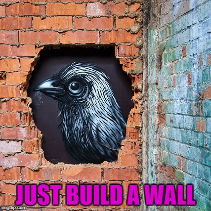 JUST BUILD A WALL | made w/ Imgflip meme maker