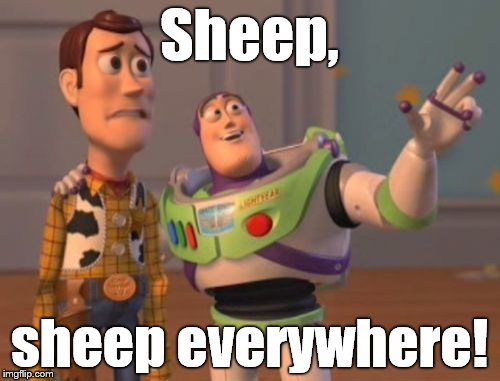 X, X Everywhere Meme | Sheep, sheep everywhere! | image tagged in memes,x,x everywhere,x x everywhere | made w/ Imgflip meme maker