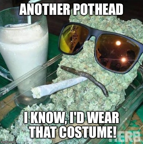 ANOTHER POTHEAD I KNOW, I'D WEAR THAT COSTUME! | made w/ Imgflip meme maker