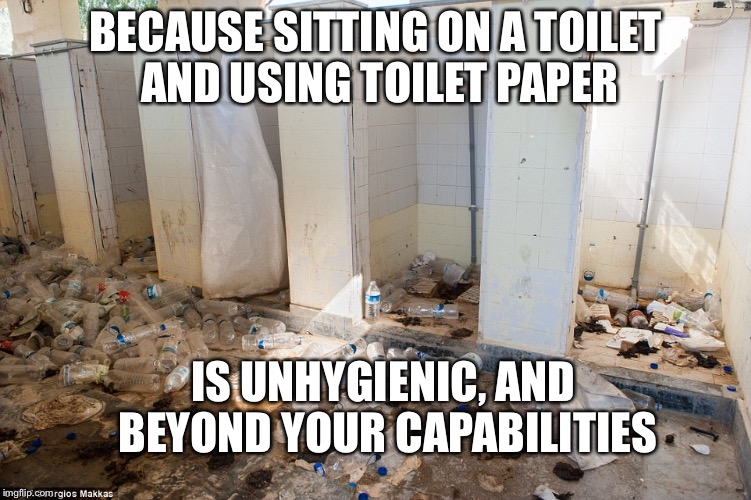 BECAUSE SITTING ON A TOILET AND USING TOILET PAPER IS UNHYGIENIC, AND BEYOND YOUR CAPABILITIES | image tagged in toilet humor,toilet paper,arse wipe | made w/ Imgflip meme maker