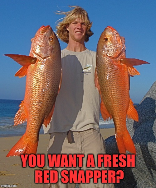 YOU WANT A FRESH RED SNAPPER? | made w/ Imgflip meme maker